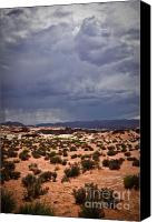 (c) 2010 Canvas Prints - Arizona Rainy Desert Landscape Canvas Print by Ryan Kelly