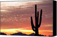 Heavens Canvas Prints - Arizona Saguaro Sunrise Canvas Print by James Bo Insogna