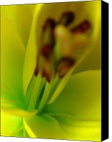 Lillies Canvas Prints - As I am Canvas Print by Juergen Roth