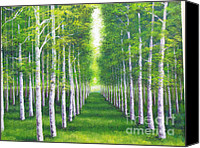 Diane Hewitt Canvas Prints - Aspen Forest Canvas Print by Diane Hewitt