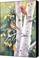 Red Cardinal Canvas Prints - Aspen Light Canvas Print by Patricia Pushaw