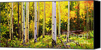 Fall Leaves Canvas Prints - Aspen Symphony Canvas Print by Gary Kim