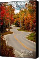 Door County Canvas Prints - Asphalt Creek in Door County Canvas Print by Shutter Happens Photography