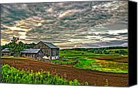 Barn Digital Art Canvas Prints - At One With the Land Canvas Print by Steve Harrington