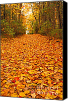 Forest Floor Canvas Prints - At the end of the road Canvas Print by Alana Ranney