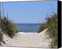 Beach Photograph Canvas Prints - Atlantic Access Canvas Print by Al Powell Photography USA