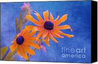 Textured Floral Canvas Prints - Attachement - s11at01d Canvas Print by Variance Collections