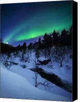 Polar Aurora Canvas Prints - Aurora And A Full Moon Over Tennevik Canvas Print by Arild Heitmann