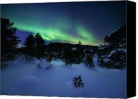 Polar Aurora Canvas Prints - Aurora Borealis Over Forramarka Woods Canvas Print by Arild Heitmann