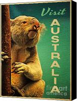 Koala Canvas Prints - Australia Koala Canvas Print by Vintage Poster Designs