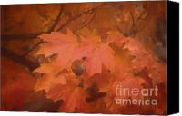 Leaves Canvas Prints - Autumn 2 Canvas Print by Jeff Breiman