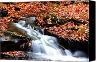 Mountain Stream Canvas Prints - Autumn along Birch River Canvas Print by Thomas R Fletcher