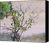 Fall Leaves Canvas Prints - Autumn Birch by Sand Creek Canvas Print by Carolyn Doe
