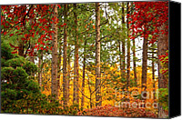 Fall Leaves Canvas Prints - Autumn Canvas Canvas Print by Carol Groenen