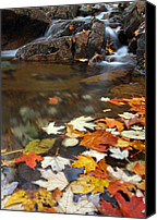 Autumn Canvas Prints - Autumn Cascade Canvas Print by Juergen Roth