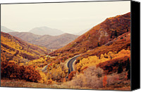 Salt Lake Canvas Prints - Autumn Colored Trees Along Mountain Road Canvas Print by Www.julia-wade.com