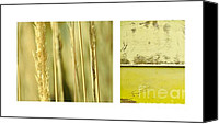 Impression Canvas Prints - Autumn Diptych Canvas Print by Iris Lehnhardt
