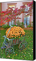 Indiana Dogwood Trees Canvas Prints - Autumn Display I Canvas Print by Steven Ainsworth