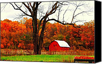Indiana Autumn Canvas Prints - Autumn In Indiana Canvas Print by Robin Pross