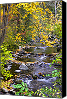Ashland Canvas Prints - Autumn in Lithia Park Canvas Print by Loree Johnson
