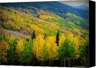 Southern Rocky Mountains Canvas Prints - Autumn in the Rockies Canvas Print by Aaron Burrows