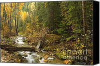 Mountain Stream Canvas Prints - Autumn in the St Joe Canvas Print by Idaho Scenic Images Linda Lantzy