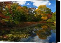 Autumn Canvas Prints - Autumn Landscape Canvas Print by Juergen Roth