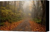 Autumn Leaves Canvas Prints - Autumn Lane Canvas Print by Mike  Dawson