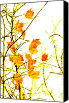 Closeup Mixed Media Canvas Prints - Autumn Leaves Abstract Canvas Print by Andee Photography