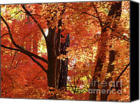 Fall Leaves Canvas Prints - Autumn Leaves Canvas Print by Carol Groenen