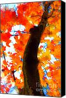 Trees Digital Art Canvas Prints - Autumn Leaves Canvas Print by Jeff Breiman