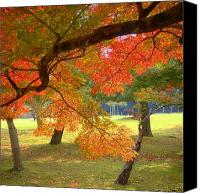 Trees Canvas Prints - Autumn Leaves Canvas Print by Roberto Alamino