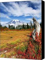 Mt. Rainier Canvas Prints - Autumn Majesty Canvas Print by Mike  Dawson