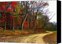 Country Dirt Roads Photo Canvas Prints - Autumn on Bottomland Road Canvas Print by Julie Dant