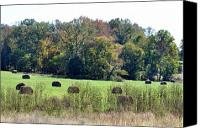 Arkansas Canvas Prints - Autumn Pastures Canvas Print by Jan Amiss Photography