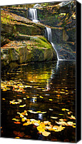 Maple Leafs Canvas Prints - Autumn Pool Canvas Print by Bill  Wakeley