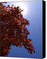 Anna Villarreal Garbis Canvas Prints - Autumn Sky I Canvas Print by Anna Villarreal Garbis