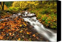 Wahkeena Creek Canvas Prints - Autumn Split Canvas Print by Mike  Dawson