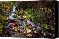 Waterfalls Canvas Prints - Autumn Stream Canvas Print by Chad Dutson