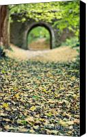 Arch Bridge Canvas Prints - Autumn Stroll Canvas Print by Meirion Matthias