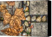 Chromatic Canvas Prints - Autumn Texture Canvas Print by Wayne Sherriff