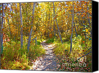 Autumn Scenes Canvas Prints - Autumn Trail Canvas Print by Jim Sauchyn