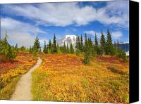 Mt. Rainier Canvas Prints - Autumn Trail Canvas Print by Mike  Dawson