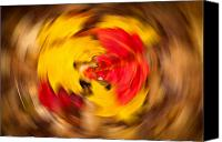Matt Dobson Canvas Prints - Autumn Trance Canvas Print by Matt Dobson