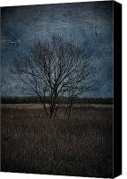 Rural Decay Framed Prints Canvas Prints - Autumn Tree Canvas Print by Larysa Luciw