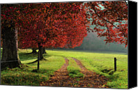 Dirt Road Canvas Prints - Autumn Trees In Garden Canvas Print by Philippe Sainte-Laudy Photography