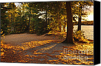 Evergreen Canvas Prints - Autumn trees near lake Canvas Print by Elena Elisseeva