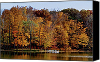 Indiana Autumn Canvas Prints - Autumn Trees Canvas Print by Sandy Keeton