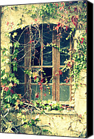 Old Abandoned House Canvas Prints - Autumn vines across a window Canvas Print by Georgia Fowler
