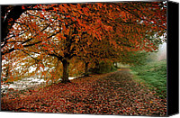 Fall Leaves Pyrography Canvas Prints - Autumn Walk Canvas Print by Robert Evans